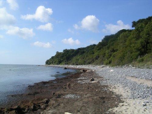 Praia na illa