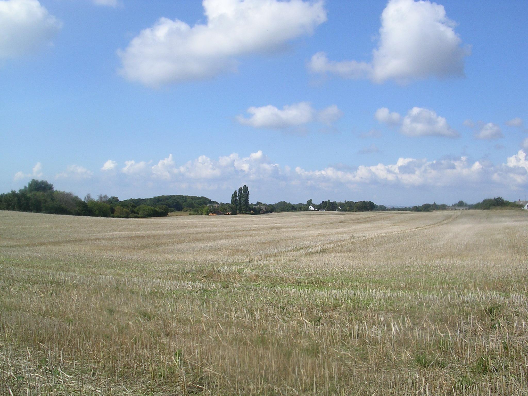 paisaxe danés