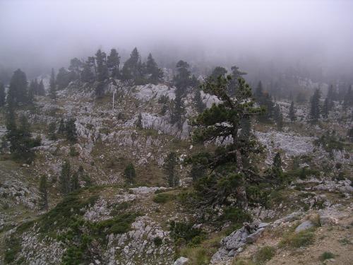 Paisaxe karstico en Larra