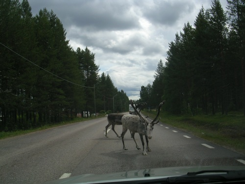 Usuarios da estrada E10 (Suecia)