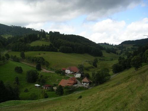 Baixando hacia Badenweiler. Selva Negra (Alemaña)