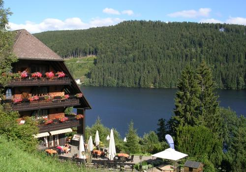 Lago de Titisee. Selva Negra (Alemaña)