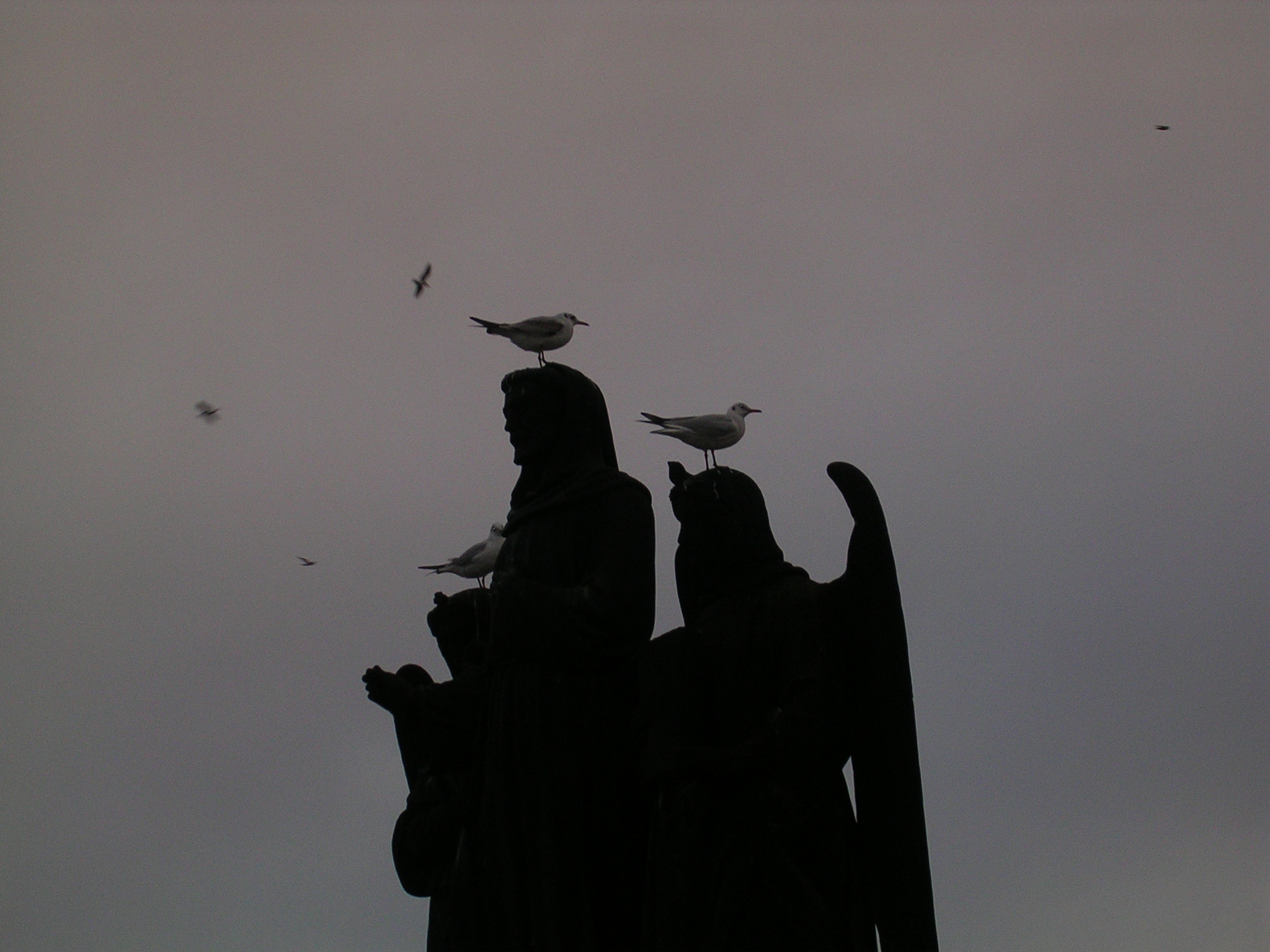Unhas das estatuas da Ponte de Carlos V