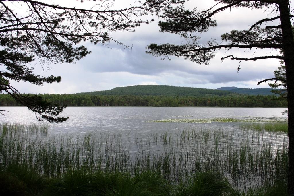 Loch Garten no Cairngorms National Park