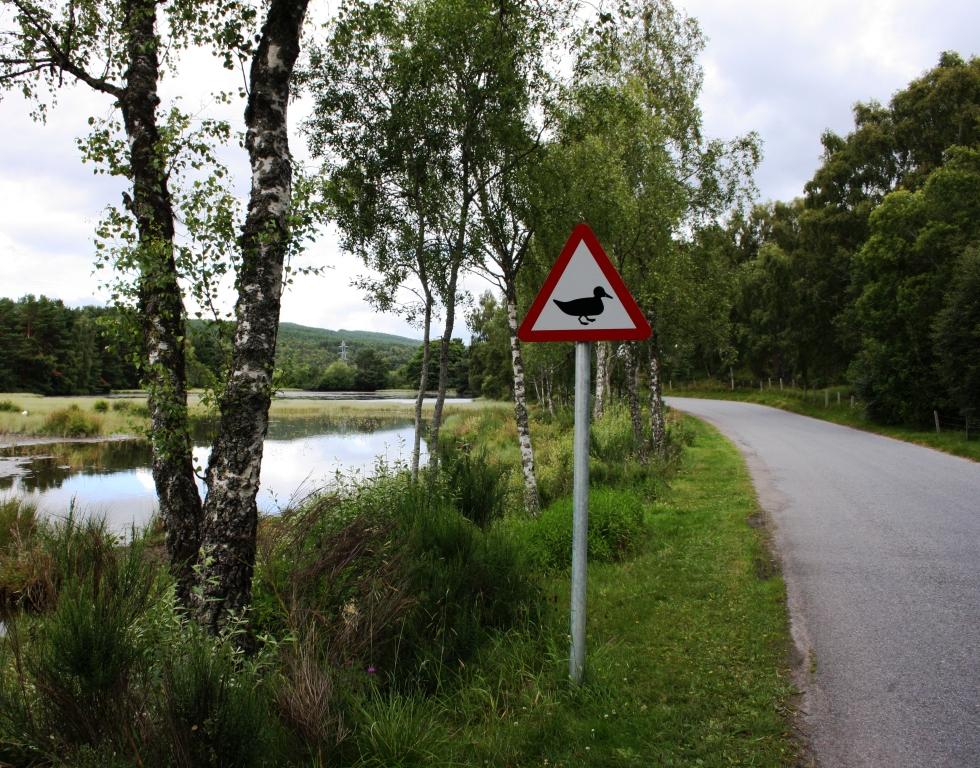 No Cairngorms National Park