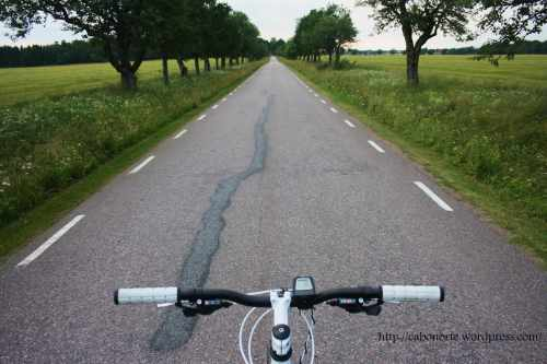 En bici por Suecia