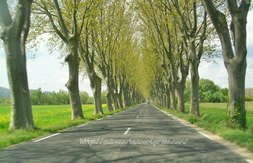 Carretera en el sur de Francia, Abril 2009