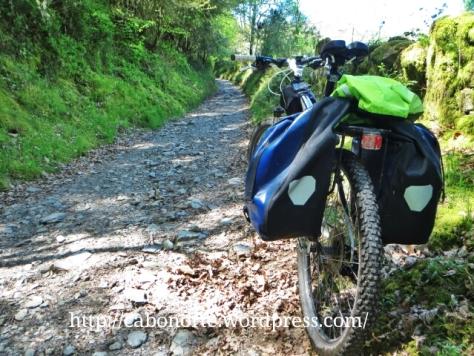 El Camino cerca de Triacastela