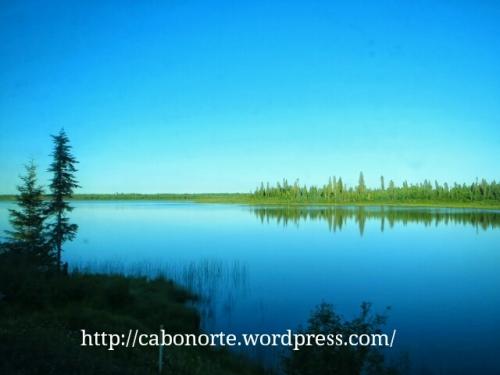 A taiga de Canadá dende o tren