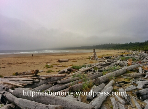 Praia na Reserva Natural Pacific Rim
