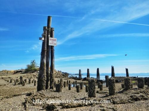 Porto abandoado preto de Courtenay