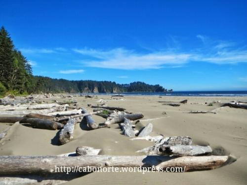 As Praias do Pacífico