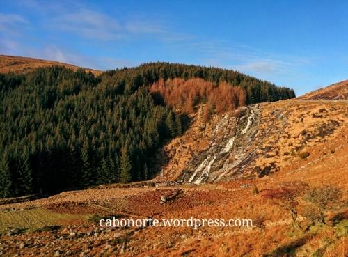 A auga da Guinness provén das Montañas de Wicklow