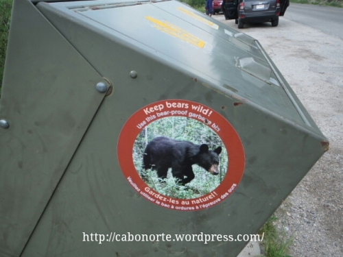 Papeleira anti-osos