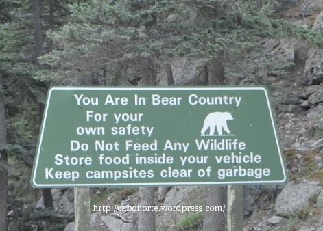 Aviso de osos en Canadá