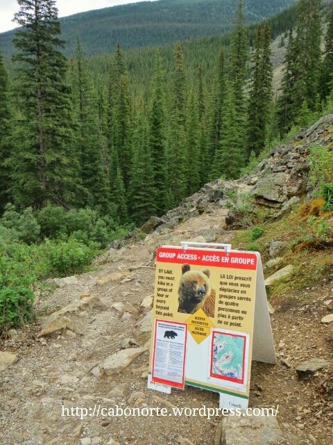 Aviso de osos na ruta